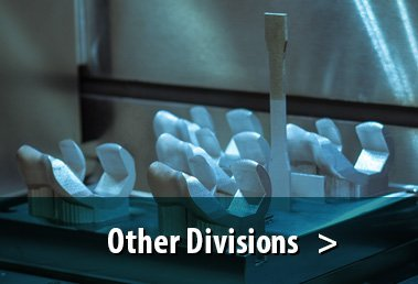 other-divisions